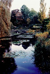 C16 Giverny, October 1990