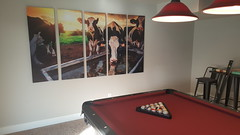 The new cow pic for the basement