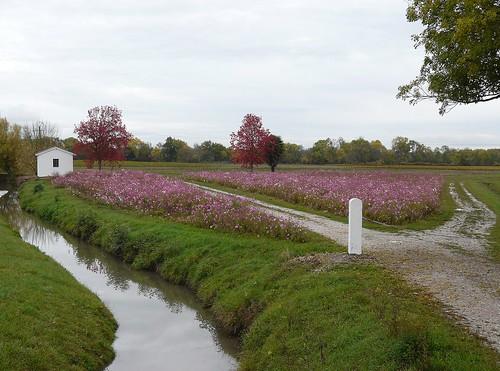 Ruisseau de Laurina