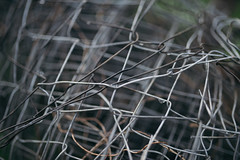 Focused grey wire mesh fence with raindrops