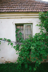 Abandoned and old house with broken window and ragged walls, old village picture