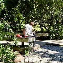 Reading a book at the garden