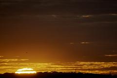A very special sunrise  | 200628-5623-jikatu