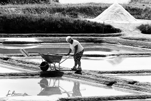 fleur de sel extraction in Brittany