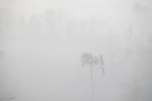 Hiding in fog