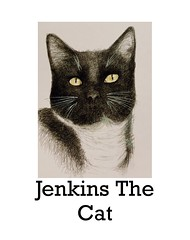 Jenkins The Children's Book By Jmsw 2020