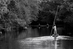 Le nègo-chin, la barque mythique de la Sorgue... The nègo-chin, the mythical boat of the Sorgue... #E-M10MarkII #Gimp #DigiKam