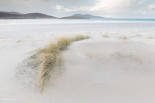 Luskentyre Beach (in explore)