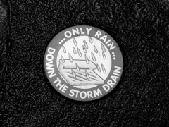 """Only rain down the storm drain"""