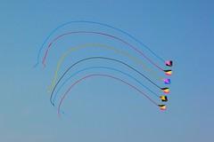 Kites over Virginia Beach