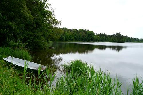 Althöllteich / Old hell pond