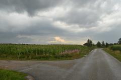 Wolken en veld (137FJAKA_4139)