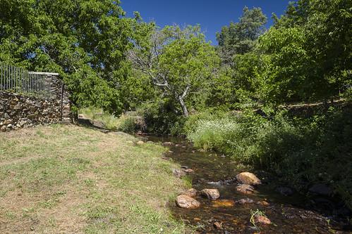 Prádena de Atienza, río Pelagallinas.