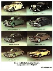1977 Jaguar Ad