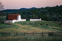 Countryside - Virginia