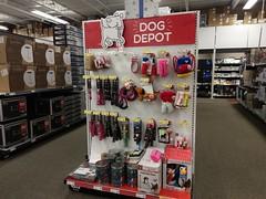 Delightful dog depot!
