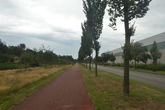 Slagenweg, Ommen (137FJAKA_4046)