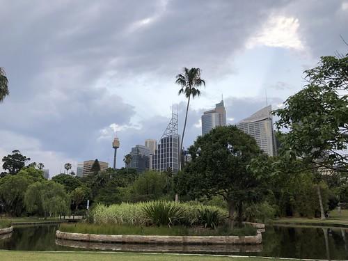 Brionna Davis_IFSA Sydney_Fall 2019_4