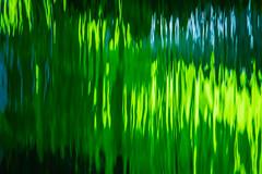 Green Waves II
