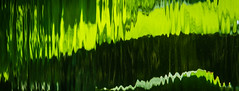 Green Waves I