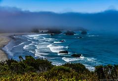 Foggy Morro Bay Morning