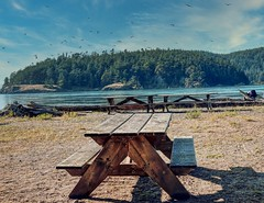 Picnic Bench at Deception Pass
