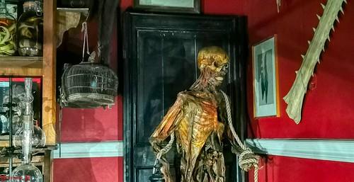 Horror Museum - 8632
