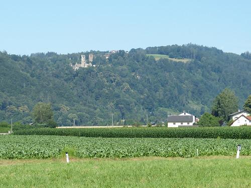 Schaunburg
