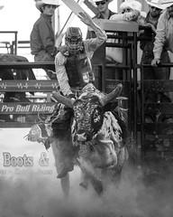 Johnson County Pro Bull Riding 2020
