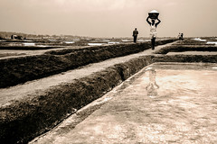 Salt Pan @Marakkanam, Tamilnadu, India
