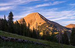 Mount Mellenthin & South Mountain (7-10-20 - 7-12-20)