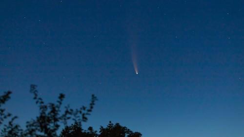 Comète Néowise.