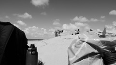 Beach life - Zeeland