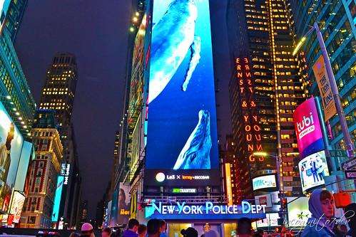Times Square at Night Manhattan New York City NY P00588 DSC_2021