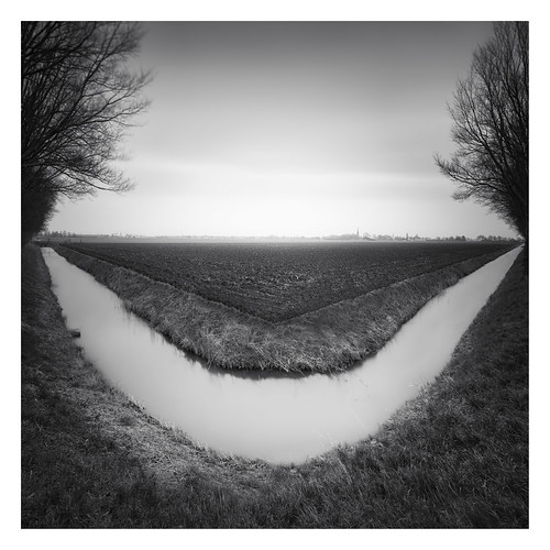 Dutch Polder - The ditch [On Explore]