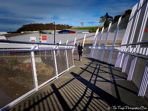 Waiarohia Stream Footbridge_Kotuitui Whitinga