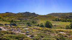 Le plateau du Cuscione-05