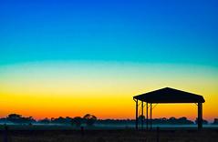 Nyah Sunrise