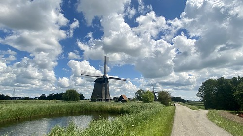 Summer in the polders of North Holland