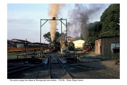 Wernigerode. Loco depot at the main station. 25.8.86