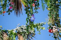 Ciel de fleurs par Les Naturistes #1