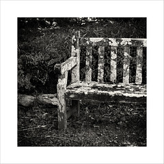 old_bench