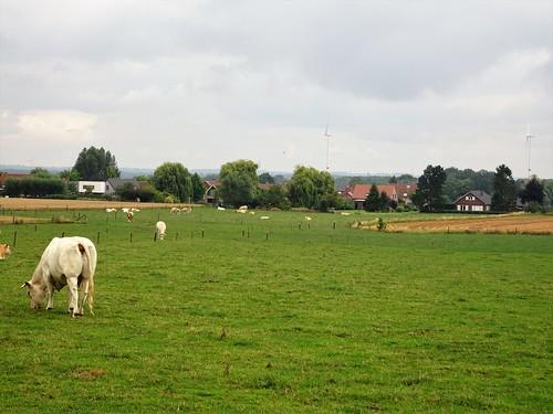 Quatre Chins, Tournai, Wallonie