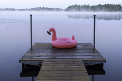 Inflatable flamingo at sunrise on a dock on Lingroth Lake in Aitkin, Minnesota