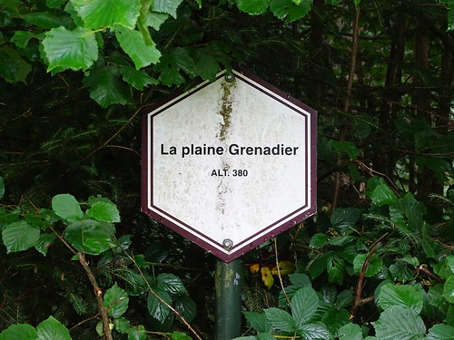 Plaine Grenadier