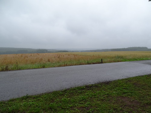 La plaine Buffle