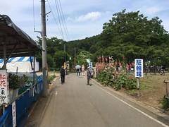 Kitayama Park in Higashimurayama-shi 35