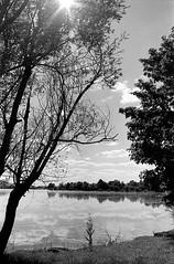 Contre jour et reflets au lac de Vaivre