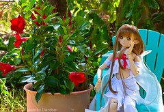 Dollfie Asuna in the Garden