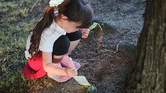 SAKIKO digs a grave, because her pet goldfish has died...